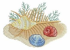Seashells 4, 9 - 4x4 | What's New | Machine Embroidery Designs | SWAKembroidery.com Ace Points Embroidery