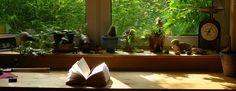 """Para ler - """"A Informadora"""" de Lindsey Davis   Pelo Rim"""