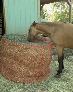 Homemade round bale hay saver with plastic snow fence and hay nets sewn to the top. Helps with digestion and saves money. Not recommended for shod or haltered pasture horses. Read more here: http://www.horseforum.com/horse-nutrition/making-slow-feeder-133248/