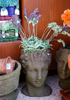 A real pot-head by The Flying Enchilada, via Flickr