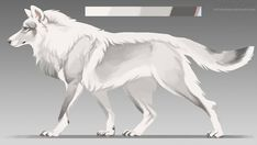White wolf adopt: SOLD by Chickenbusiness on DeviantArt - White Wolf Accept: Sold by Chickenbusiness on DeviantArt - Art Wolfe, Wolf Deviantart, Anime Wolf Drawing, Anime Art, Wolf Character, Wolf Artwork, Fantasy Wolf, Mythical Creatures Art, Fantasy Creatures
