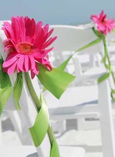 @Laura Johnson   Are you having an outdoor wedding?  This would be pretty...love those Gerbera Daisy's!