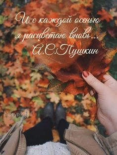 October Wallpaper, Russian Quotes, Different Quotes, Poetry Quotes, Kids And Parenting, Instagram Story, Cute Pictures, Have Fun, Wisdom