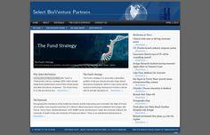 Online Marketing Strategies, Seo Marketing, Search Engine Optimization, Portfolio Design, Social Networks, The Selection, Investing, Web Design, Florida