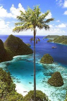 Travel destination, snorkeling, sun and sea, Wayag Islands, Raja Ampat, Indonesia