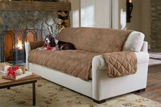 Tips That Help You Get The Best Leather Sofa Deal. Leather sofas and leather couch sets are available in a diversity of colors and styles. A leather couch is the ideal way to improve a space's design and th Pet Sofa Cover, Sofa Cushion Covers, Sofa Covers, Armchair Covers, Sure Fit Slipcovers, Loveseat Slipcovers, Sofa Couch, Cushions On Sofa