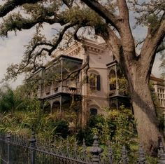 "september-bird: "" Garden District, New Orleans """