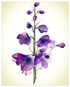 Delphinium - botanical print, watercolor botanical, watercolor flowers, cottage chic by amberalexander on Etsy (null) Watercolor Flowers, Watercolor Art, Watercolour Paintings, Watercolor Tattoos, Watercolor Techniques, Art Floral, Floral Wall, Art And Illustration, Illustrations