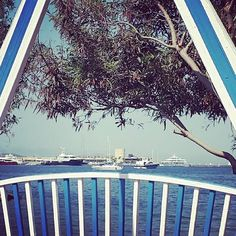 Good Morning #weekend ! #Bodrum #saturday #Turkey #beautifulplace #destination #summer #summer2016 #vacation #holiday #turkeyhomes #igers #igersbodrum #uk #yalikavak #yalikavakmarina #turquie #türkiye #türkei #uae #kuwait #saudi