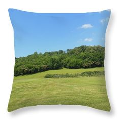 Want to buy this pillow? Click on the title or follow this link:  https://fineartamerica.com/featured/the-grass-is-always-greener-ali-baucom.html?product=throw-pillow