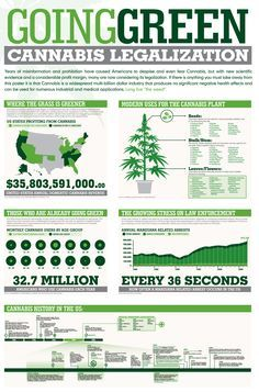 why drugs should be legalized essay This essay argues that marijuana should be legalized it presents both sides marijuana is a drug that changes mindset and the perception of everything perceived by brain opponents of legalizing marijuana are of the view that it is a mind-altering drug and as such should not be allowed to become a legal drug today.