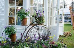 Vintage bicycle - via Schoolhouse Country Gardens