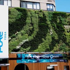 Green Living Wall Gallery | Green Living Technologies