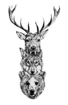 deer-wolf-bear