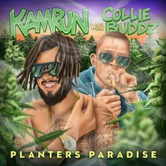 Music Album Covers, Reggae, Collie, Good Music, Paradise, Planters, Songs, Ska, Plant