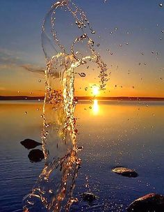 Sunset New Site is part of Photography wallpaper - Sunset Sunset Water Photography, Amazing Photography, Landscape Photography, Fashion Photography, Photography Women, Teenage Photography, Pinterest Photography, Grunge Photography, Portrait Photography