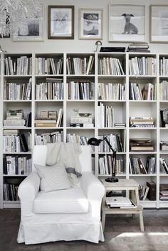 {White library shelving.}