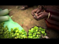 Lives of Others | Sustainable Agriculture in India - YouTube