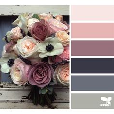 design seeds | search | for all who ♥ color ❤ liked on Polyvore featuring colors, color palettes and design seed