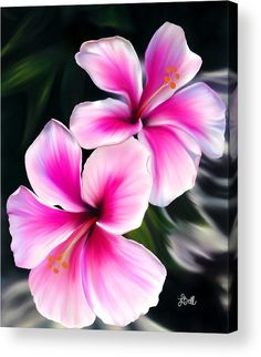 Hibiscuses Acrylic Print by Laura Bell.  All acrylic prints are professionally printed, packaged, and shipped within 3 - 4 business days and delivered ready-to-hang on your wall. Choose from multiple sizes and mounting options.