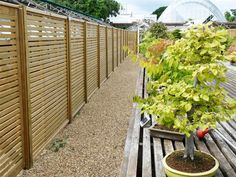 17 Best Fencing Images In 2017 Front Yard Landscaping
