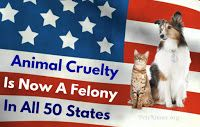 Pets N More: EXCELLENT NEWS!!! Animal Cruelty Is Now A Felony In All 50 States