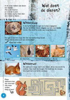 Wat doen dieren in de winter? Karen - New Ideas Activities For Kids, Crafts For Kids, Winter Project, Creative Kids, Kids Gifts, School Projects, Winter Wonderland, Ideas, Biology