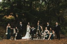 Some forest regality headin' your way | Image by Shari and Mike Photography