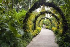 Singapore image gallery - Lonely Planet