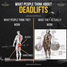 Of all the compound lifts that recruit more than one muscle group, the deadlift is arguably the most demanding. It's a one on one challenge between you and the barbell.If you want to build mass and strength in abundance, you have to discard the excuses and incorporate deadlifts into your routine. We've constructed a deadlift program that will increase your grip, build your back and power up your entire posterior chain. Gym Workout Chart, Gym Workout Tips, Workout Plans, Gain Muscle, Build Muscle, Push Pull Workout, Barbell Deadlift, Compound Lifts, At Home Workouts