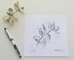 A Small #Leaves #drawing #art #process