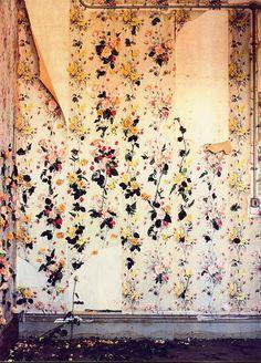 CLM - Shona Heath - wall paintings
