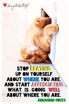 #Abraham Hicks #stop beating up on yourself about where you are, and start appreciating what is going well about where you are