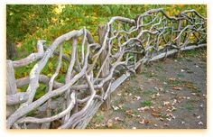 Driftwood fence; I don't know if I could build this but is would be fun to search for pieces to build with!