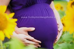 pregnancy photos sunflowers   ... maternity portraits Sunflower field sessions Maternity portraits