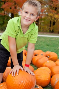 Don't forget the pumpkin patch this Fall...