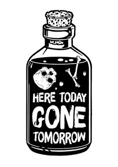 LRDP 'Here Today Gone Tomorrow' on Behance