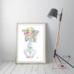 Another variation of my abstract skeleton anatomy art print with happier, lighter colors, combined with the energy the flowers in the ribcage bring. If you liked this print, you might find this interesting as well: Medical Gifts, Medical Art, Office Wall Art, Office Walls, Human Anatomy Art, Medical Office Decor, Doctor Gifts, Fine Art Paper, Light Colors