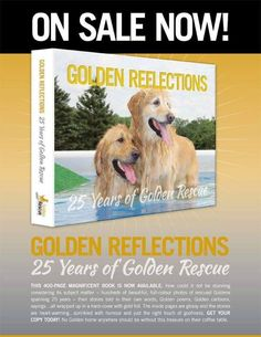 If you love Goodnight Goldens - Tails of Rescue and our #SecondChanceSunday stories, you will love this book! It's filled with heartwarming stories about so many of our wonderful rescues. Get your copy of Golden Reflections, a Limited Edition Coffee Table Book. It makes a great gift for the Golden lover in your life. Email grstore@goldenrescue.ca to order yours today! #goldenretriever #rescuedog #adoptdontshop #secondchances Great Christmas Gifts, Great Gifts, Adoption Stories, Coffee Table Books, Rescue Dogs, Announcement, Dog Lovers, Reflection, This Book