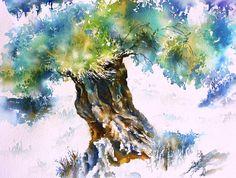 Alter Olivenbaum in Griechenland