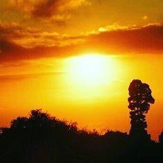 #LaPalma #wandern #IslaBonita #Frühling #Sonne #Sonnenschein #Urlaub #Reise #Travel #Holiday #canary #island #nature #natur #kanaren #canarias #sonnenuntergang #sunset
