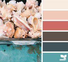 shell hues