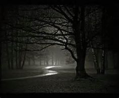 light and dark photography - - Yahoo Image Search Results