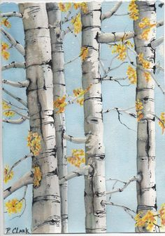 Image result for birch tree watercolor painting