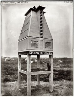 "The Best Little Bathouse in Texas: Dr. Charles Campbell and a ""municipal bat-roost"" in San Antonio, Texas (""for one of man's best friends""), his idea for mosquito control at a time when malaria was a major public health problem in the U. San Antonio, Bat Habitat, Mosquitos, Garden Structures, Mans Best Friend, Old Photos, Vintage Photos, Bird Houses, Habitats"
