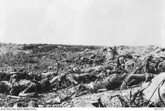 Looking back from Lone Pine to the jumping off trench from which the 1st Australian Infantry Brigade commenced its successful attack on Lone Pine on 6 August 1915. Several corpses are lying in the foreground amid debris and coils of barbed wire.