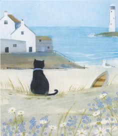 """I really don't like those vicious seagulls down there"" thought the 'Sea Cat' by Hannah Cole (B301)"
