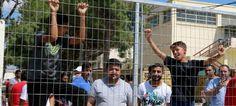 Πιερία: Χάος στην Ελλάδα με το προσφυγικό New York Times, Animals, Animales, Animaux, Animal, Animais