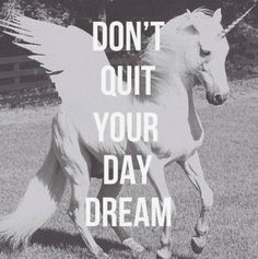 Don't quit your day dream   Inspirational Quotes