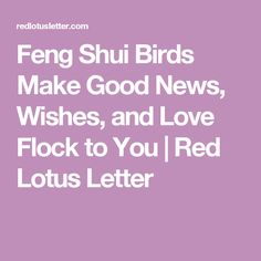 Feng Shui Birds Make Good News, Wishes, and Love Flock to You | Red Lotus Letter